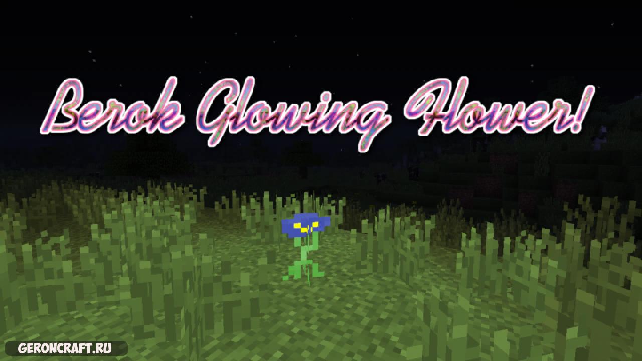 Berok Flower Mod [1.12.2]
